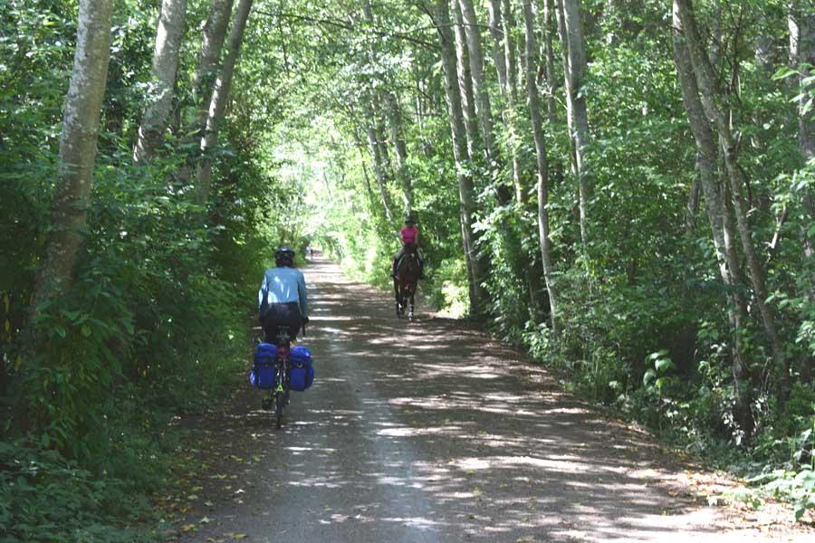Lochside Trail