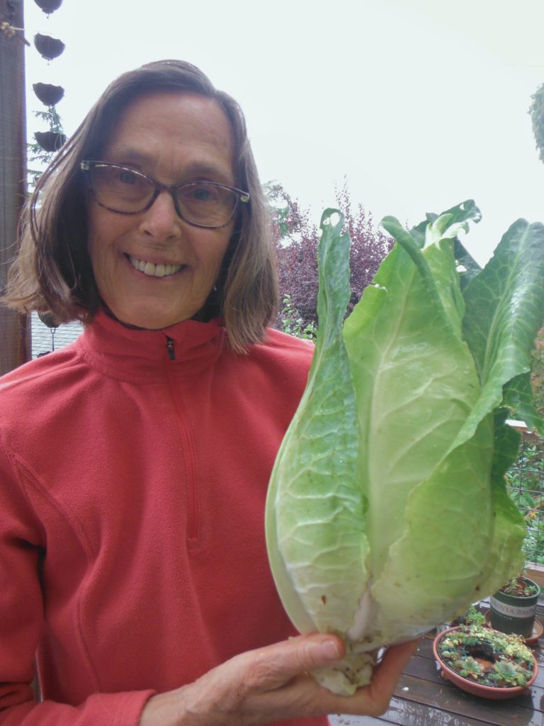 Connie w/cabbage